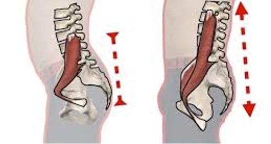 Beinschmerzen Ursachen